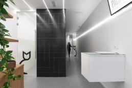 proyecto clínica veterinaria alem arquitectura